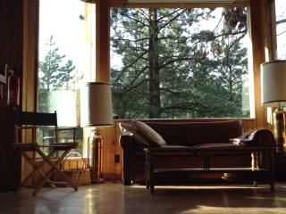 Big bay window; views of woods and canyon