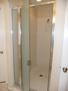 Master bedroom ensuite bathroom with walk in shower