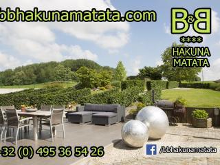 **** B&B Hakuna Matata near Pairi Daiza - Brussels, Geraardsbergen