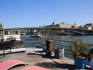 parisbeapartofit - Houseboat Champs Elysees (1384)