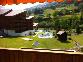 Comfortable studio in thermal parc,/natural spa, Val D'illiez