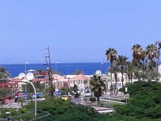 1 bedroom apart. in cetre of Playa de las Americas