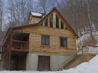 Woodland Gem--Private cabin-Hot Tub, Wifi, Jacuzzi
