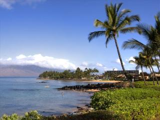 Great Ocean View!, Kihei