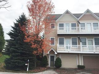 Beautifully Decorated Townhouse Style Condo, Manistee
