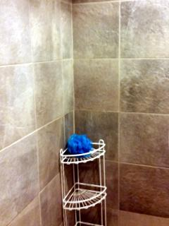 Place for your toiletries inside the shower.