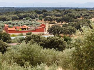 Complejo Rural atípico lujo 6-8 pax Sur de Gredos