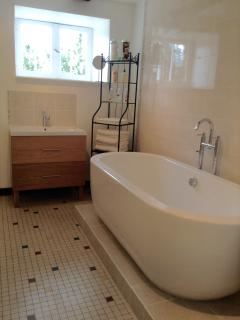 Large and luxurious bathroom.