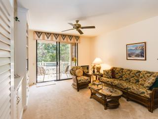 Beautiful Condo in Wailea - 12/6 - 17 $150/night++