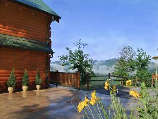 Deja View - 3 Bedroom Cabin with Amazing Views