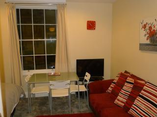 Sleek Stylish Studio apartment