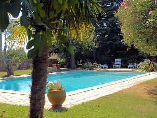 Beaucaire Gard, Villa 8p. private pool, 3 km to town center