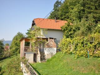 Vineyard cottage - Zidanica Krstinc, Straza