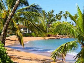 Napili Shores Resort C-120, Honokowai