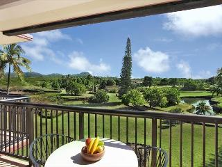 WOW***TOP floor OCEAN VIEW BLISS** Newly Remodeled** FAST WiFi, Koloa