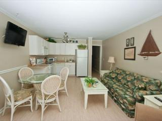 Deluxe 2 Bedroom 2 Bathroom Oceanview Condo - Ocean Dunes Villa 104, Hilton Head