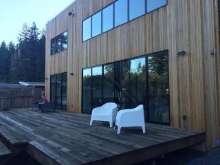 Brand New Sunny Modern Dream House, Guerneville