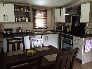 Luxury Caravan at Parkdeans Tummel Valley to rent, Tummel Bridge