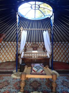 The Blue Moon honeymoon yurt - Game of Thrones - sea and forested mountain views - pfft!! :-)