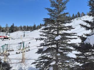 Ski Inn, Big Bear Region