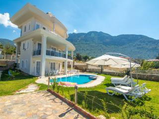 private 5 bedroom 12 sleeps  villa in ovacik, Oludeniz