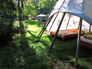 Garden Tipi with 2 meals @Yoga Sanctuary, Duncan