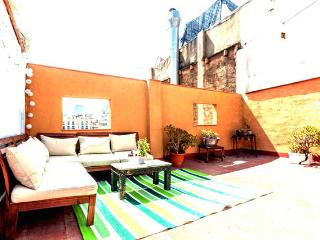 Unique apartment with big private terrace, Abrera