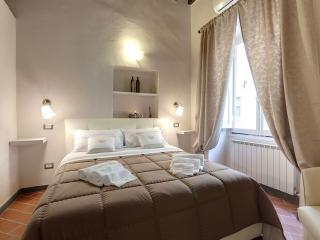 One Step to Piazza Signoria apartment in Duomo with WiFi & airconditioning.