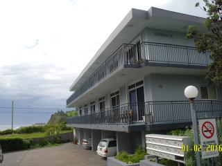 Oceanview Bombo studio apartment, Kiama