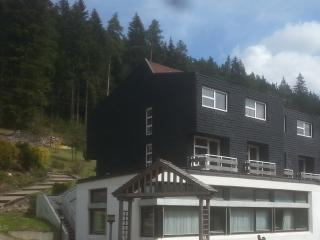 Apartment 3 for 2-6 Guests In Schwarzwald !, Enzklosterle