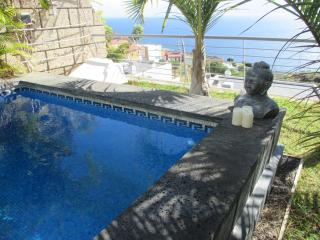 LUXURY VILLA PRIVATE POOL TENERIFE TF10, Candelaria