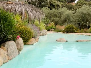 Swimingpool  Charca de las piedras