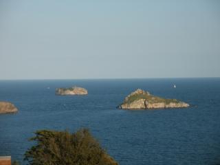 Dolphin Watch ( Villa Capri), Torquay
