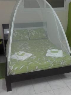 lit 2 places avec moustiquaire dome