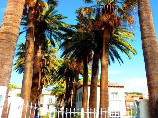 T2 grand standing,Toulon le Mourillon.