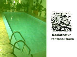 Hostel pantanal ocelotnatur, Cuiaba