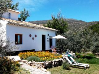 Casa Girasol in own olive grove with plunge pool, Almedinilla