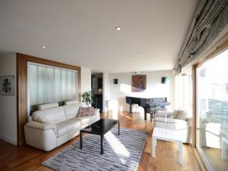 Superb Duplex - Luxury Penthouse, Dublin