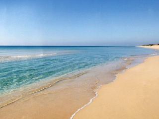 B&B brezza marina (conchiglia, 30 metri dal mare)