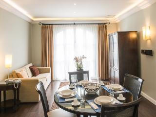 Gorgeous 1 Bedroom Apartment in Polanco, Ciudad de México