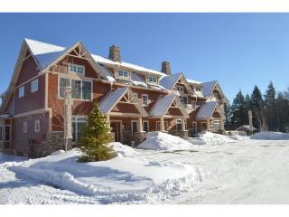 Luxury Ski-in, ski-out condo on Mount Snow