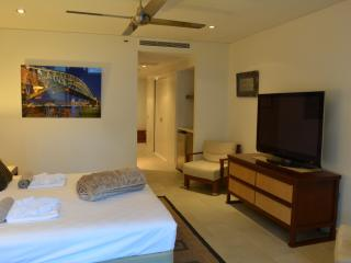 The master bedroom.  Behind Harbour Bridge is a luxury bathroom with huge spa bath & walk in shower