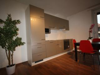 ZH Raspberry lV - Oerlikon HITrental Apartment Zurich, Zúrich