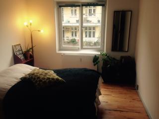Lovely Copenhagen apartment near Assistens cemetery