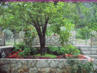 Ana's Green Paradise Apartment, Komolac