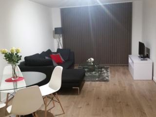 Luxury Apartment - near Olympic Park and Westfield