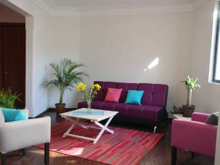 New 2BR 5Beds Steps to Everywhere, Mexico City