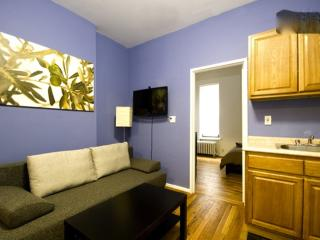INVITING 1 BEDROOM FURNISHED APARTMENT, Long Island City