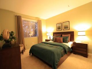 Cozy and Homey 2 Bedroom, 2 Bathroom Condo in Irvine - Luxurious Touches
