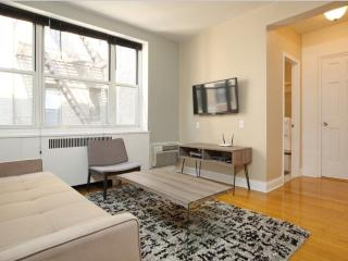 Spacious and Cozy Studio Apartment in New York - Fully Furnished, New York City